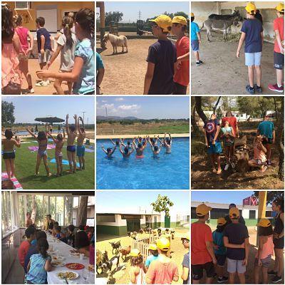 Campamento inglés niños Valencia